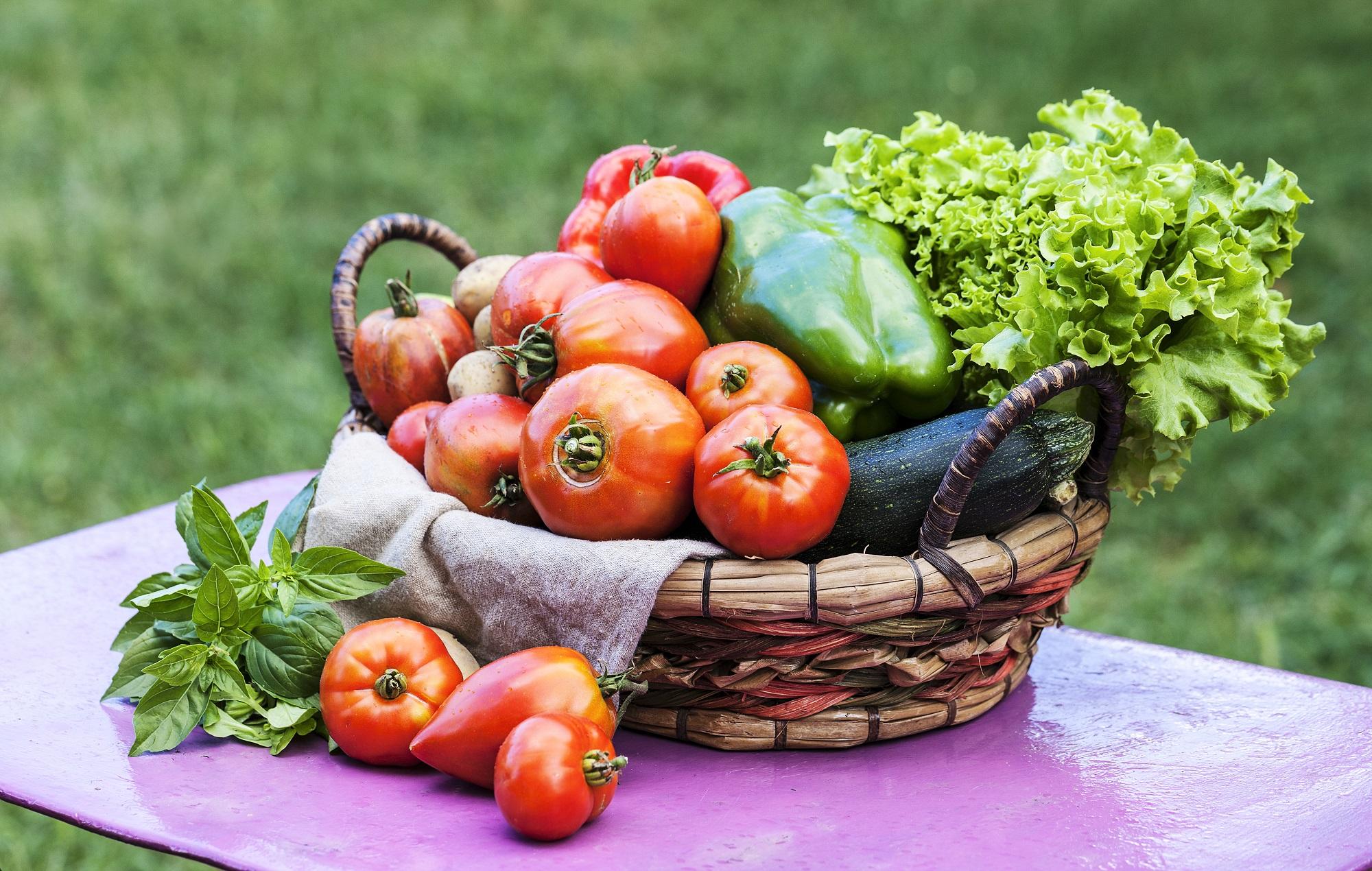 Календарь садовода и огородника на август. Источник фото: Shutterstock