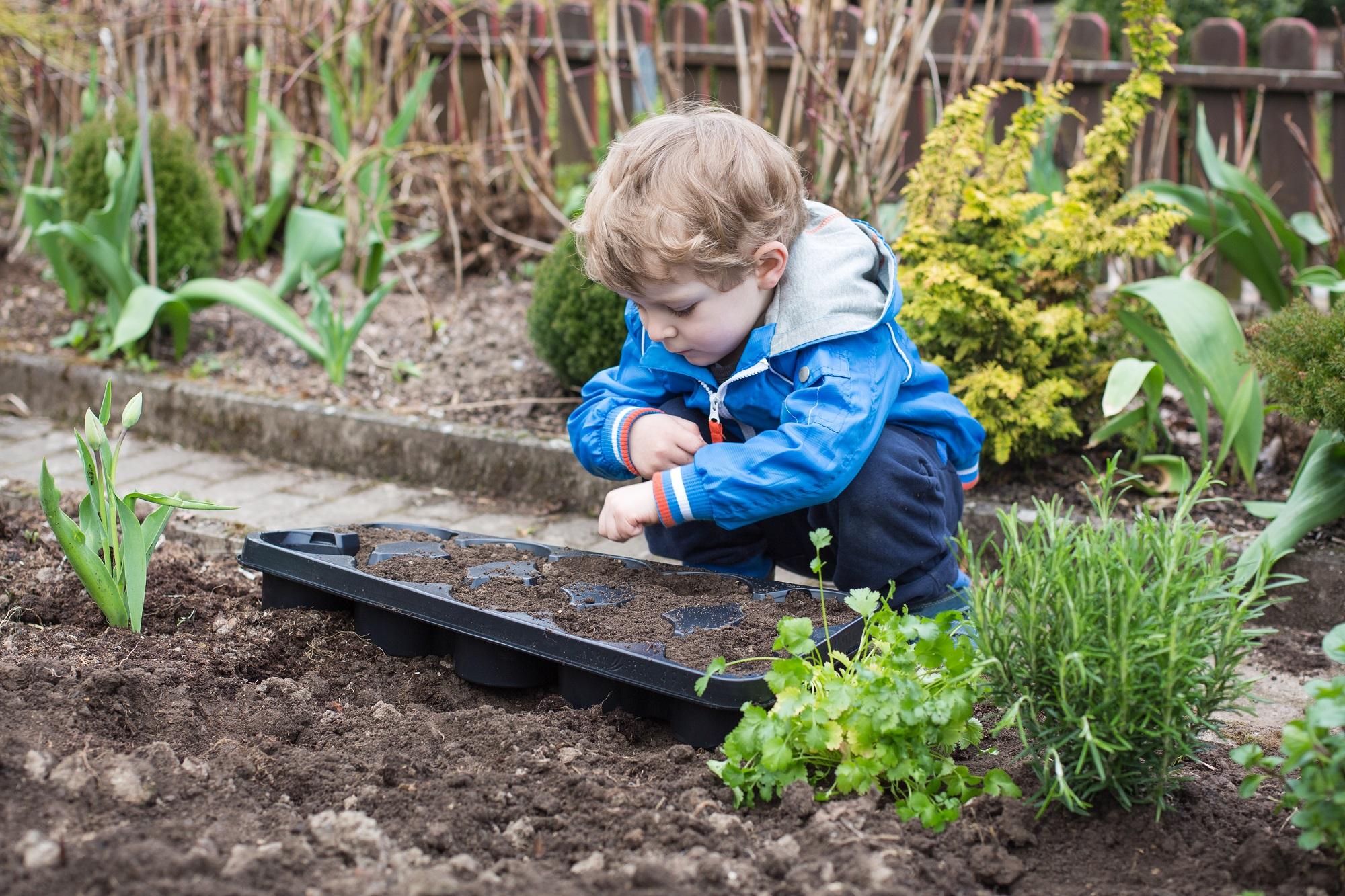 Календарь садовода и огородника апрель. Источник фото: Shutterstock
