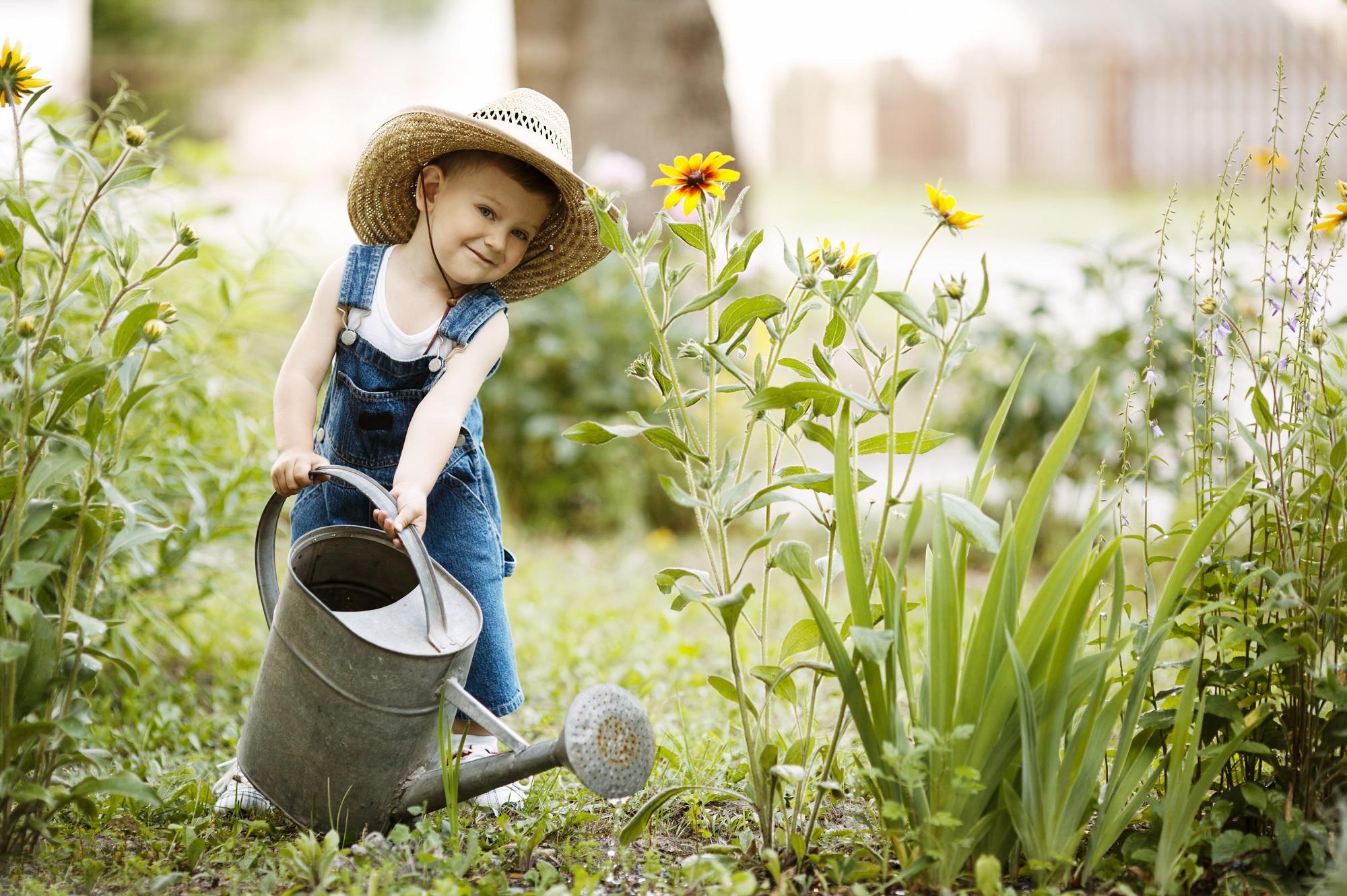 Календарь садовода и огородника июне. Источник фото: Shutterstock