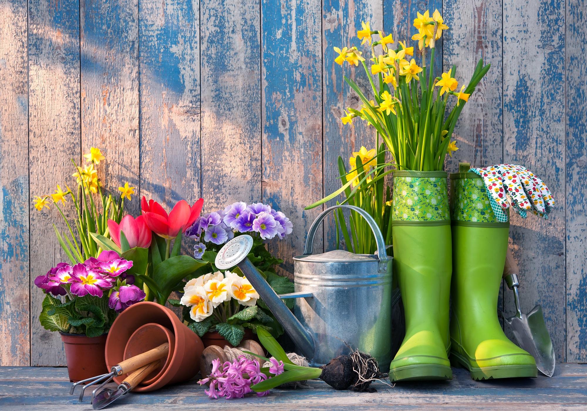 Календарь садовода и огородника на год. Источник фото: Shutterstock