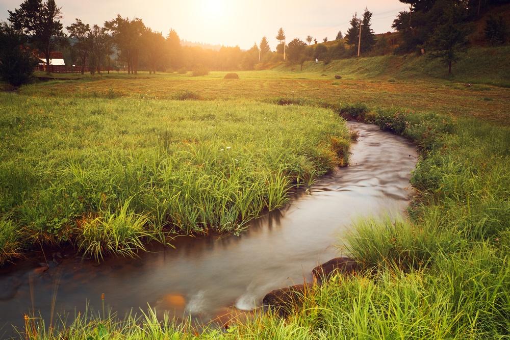 Извилистый ручей в зеленом лугу