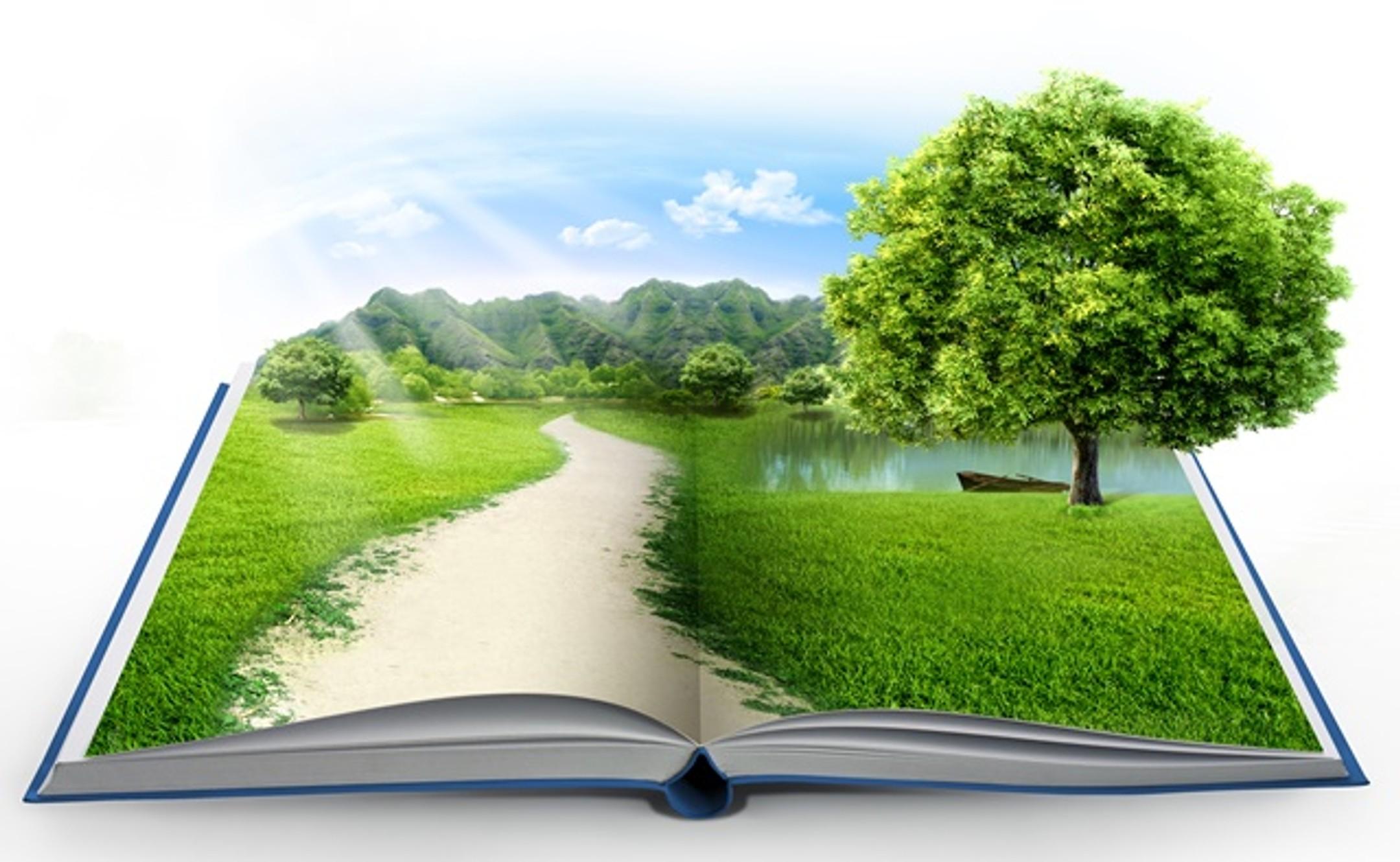Сегодня День экологического образования