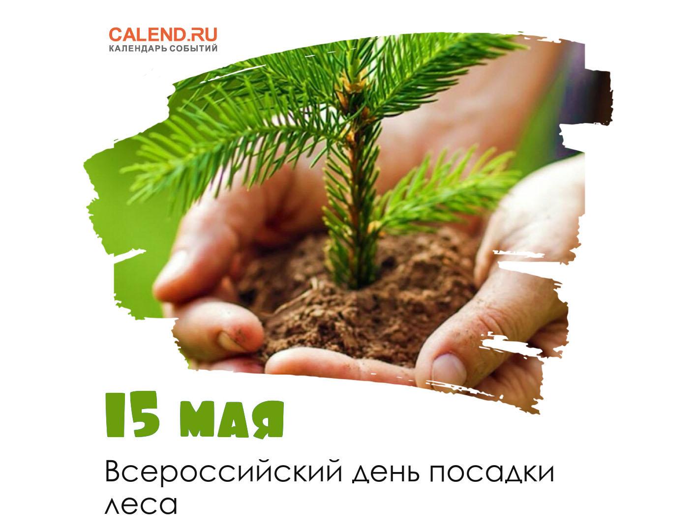 15 мая - Всероссийский день посадки леса