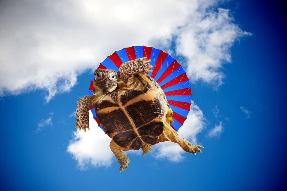 Photoshop научил меня летать!