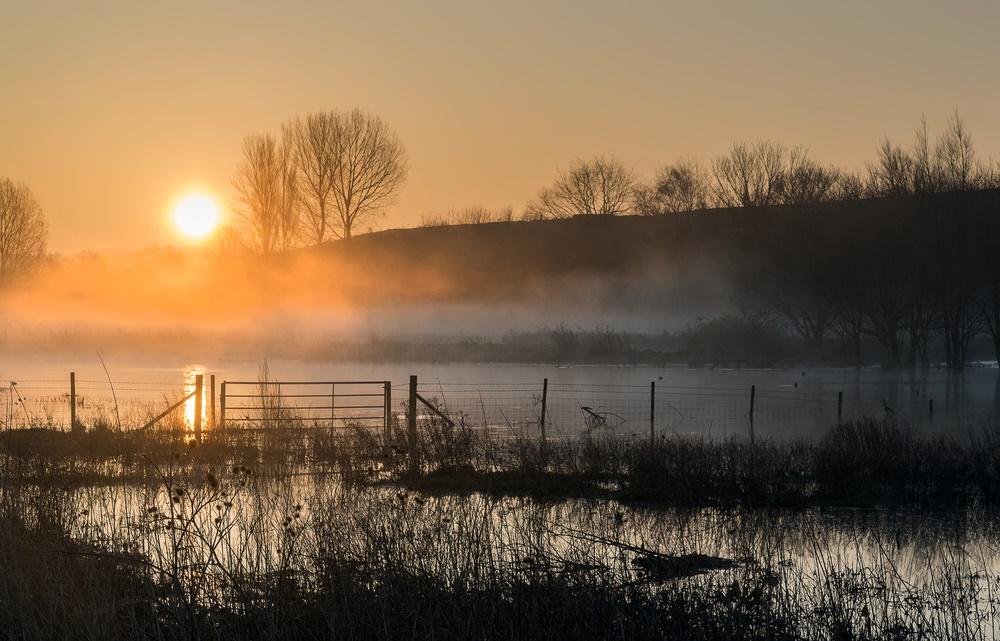 Сегодня всемирный день водно-болотных угодий