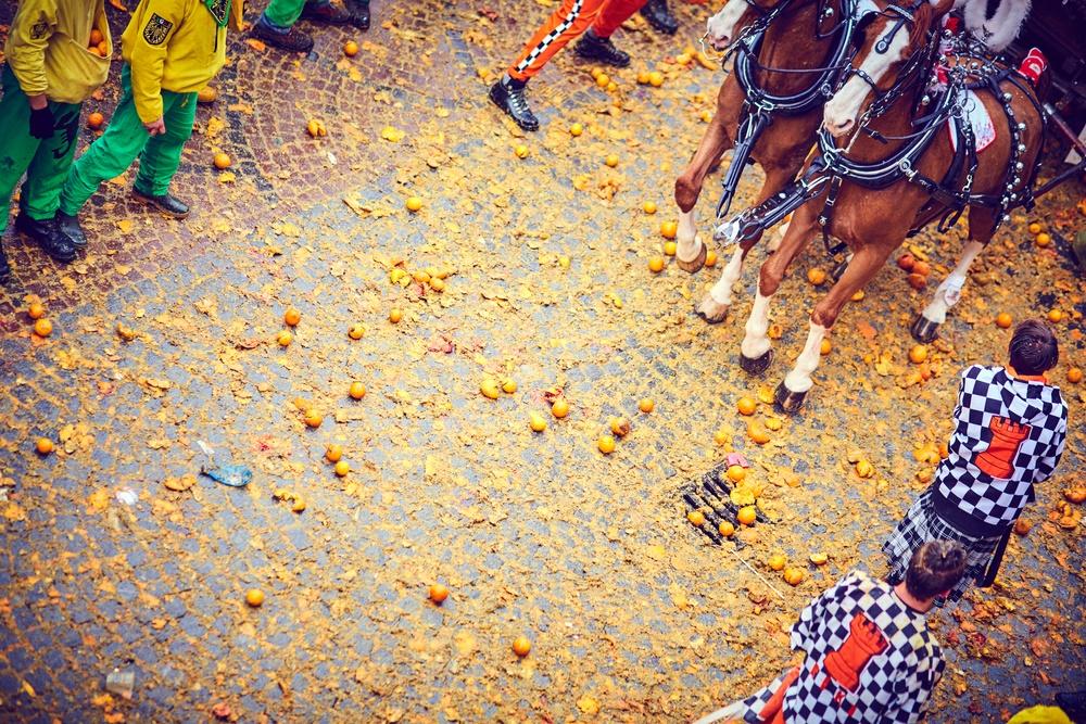 Битва апельсинов в разгаре!