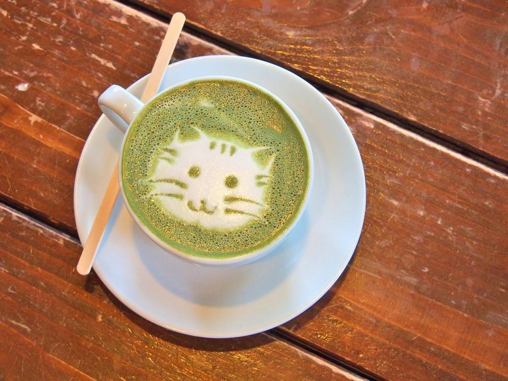 Сегодня День кошки в Японии
