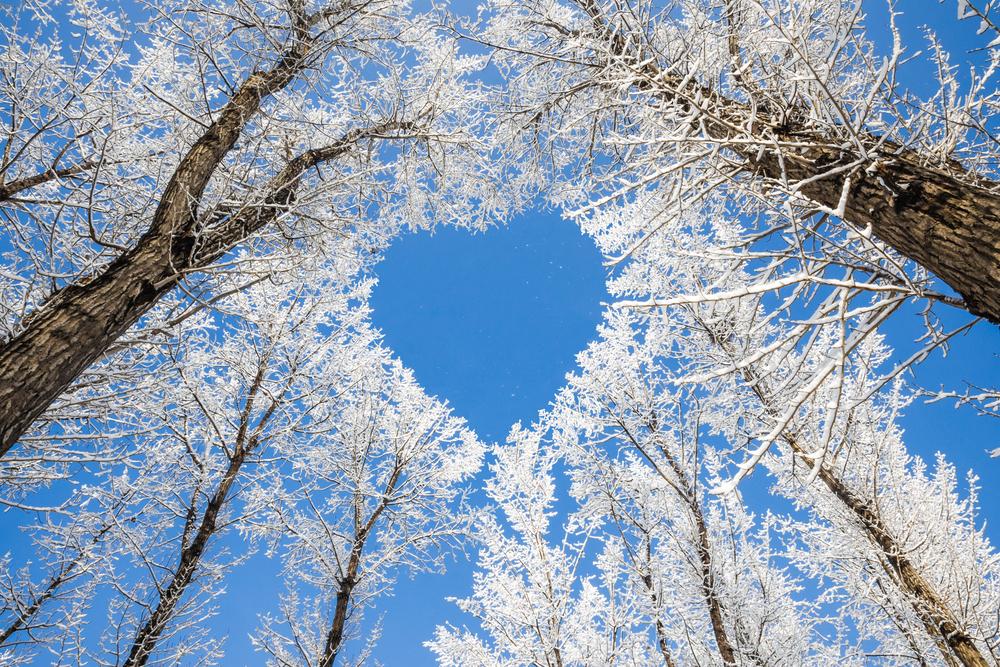 Я люблю зиму!
