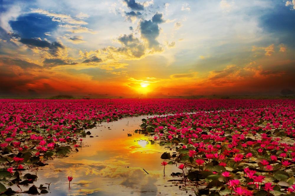 Красота природы Таиланда