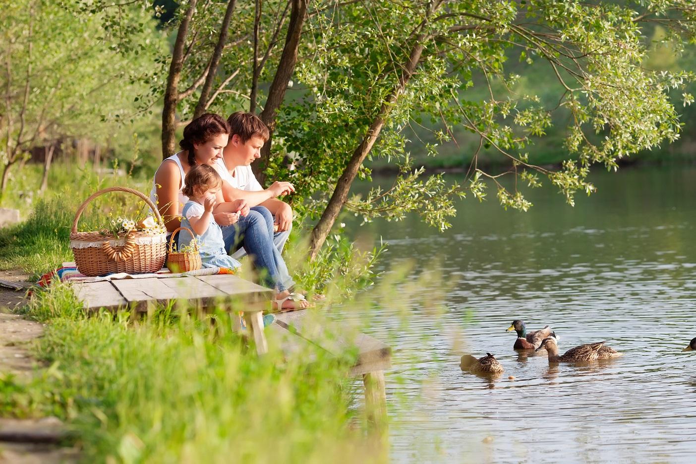 Праздники в июле. Источник фото: Shutterstock