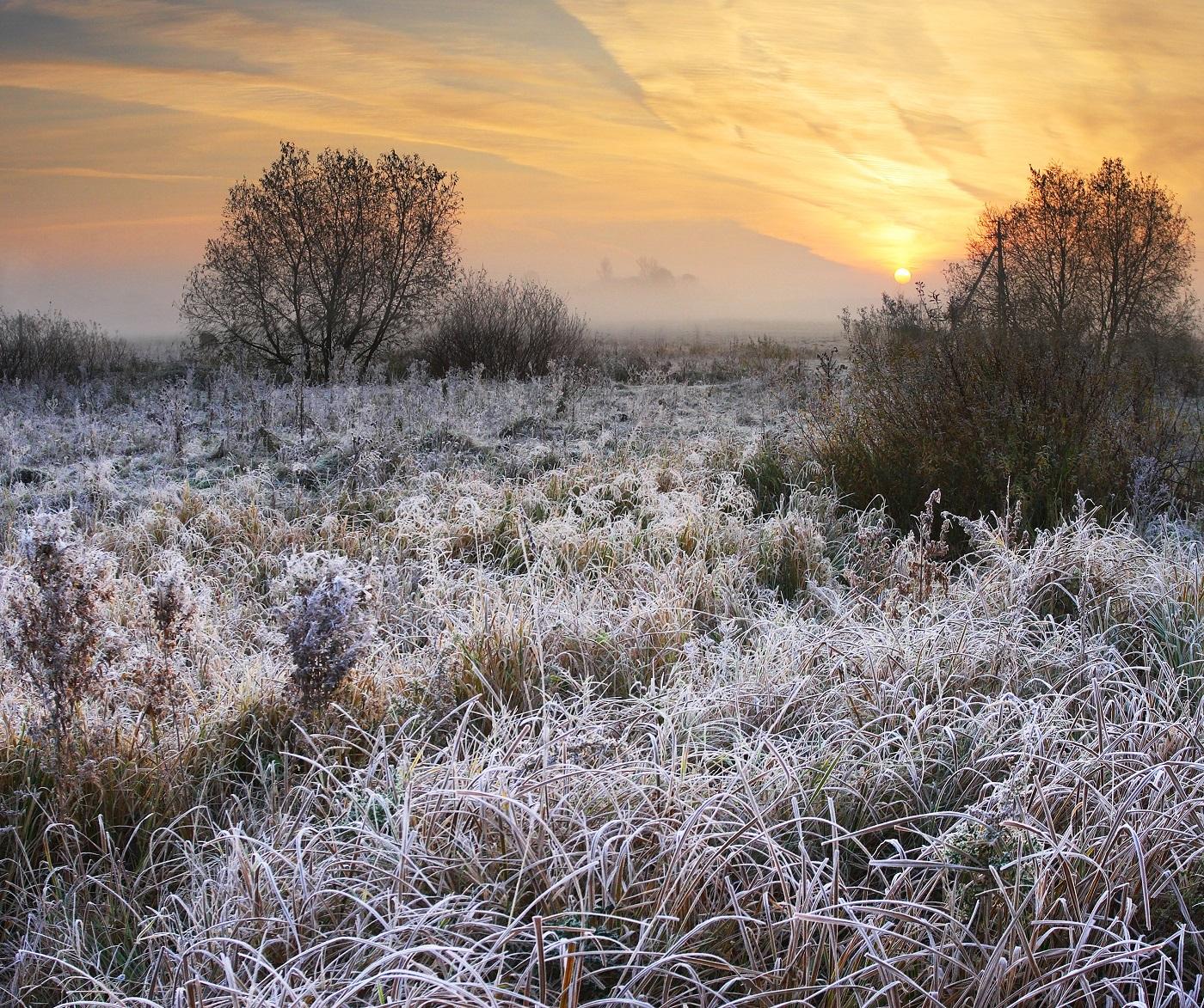 Праздники в октябре. Источник фото: Shutterstock