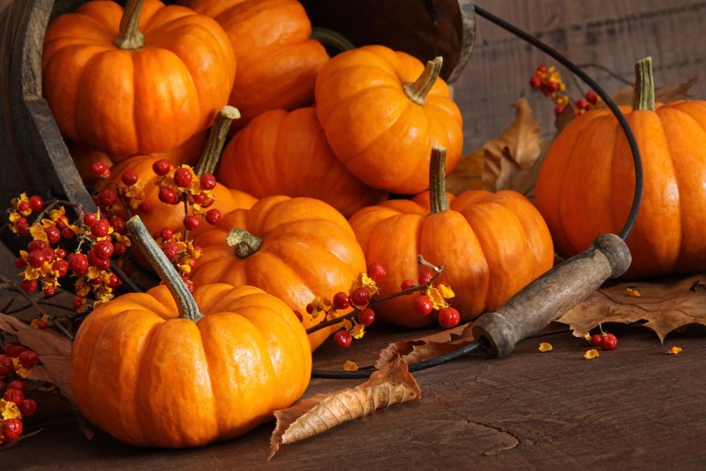 Октябрь на дворе