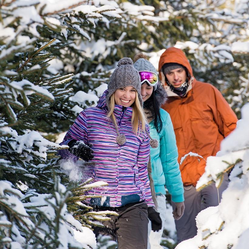 Куда поехать февраль. Источник фото: Shutterstock