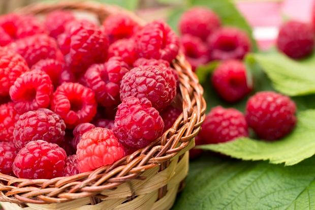 16 августа - День малинового варенья