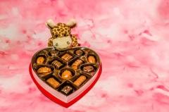 День Святого Валентина (День всех влюбленных) в Финляндии