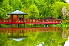 День зелени в Японии