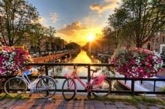 День велосипедиста в Нидерландах