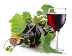 Трифон Зарезан — праздник виноградарей