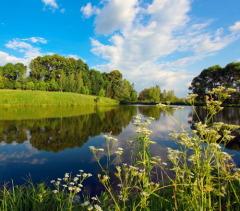 Всемирный день окружающей среды (День эколога)