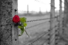 День памяти жертв геноцида во Второй мировой войне