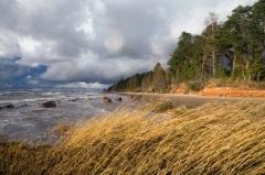 День Пяртеля в Эстонии