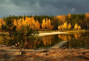 День работников леса в России