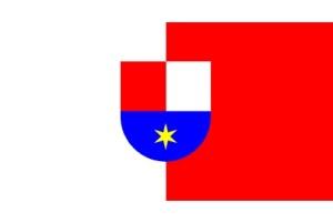День принятия Резолюции об отделении Меджимурья от венгерского государства