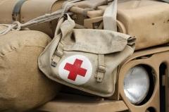 День военно-медицинского работника Армении