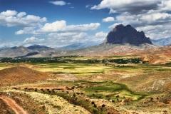 День работников Министерства экологии и природных ресурсов Азербайджана