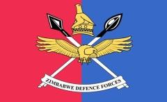 День сил обороны в Зимбабве