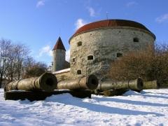 День памяти борцов Освободительной войны в Эстонии