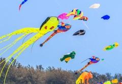 Международный фестиваль бумажных змеев в Индии