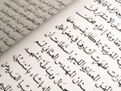 День арабского языка в ООН