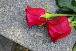 Международный день памяти и поминовения жертв терроризма