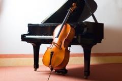 Международный день виолончели