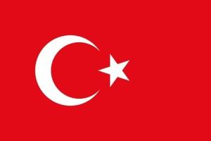 День демократии и национального единства в Турции