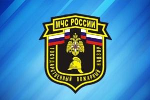 День сотрудников органов дознания МЧС России