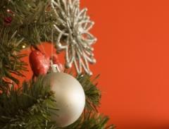 Покупаем елку: искусственная или натуральная?