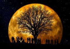 Лунный календарь и фаза Луны