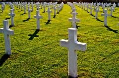 Процедура получения места на кладбищах Московской области
