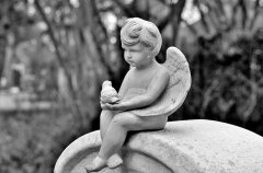 Организация похорон - виды услуг, особенности, где заказать