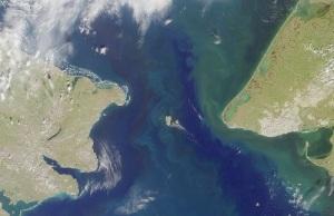 Американка Линн Кокс стала первым в истории человеком, добравшимся вплавь из США в Россию