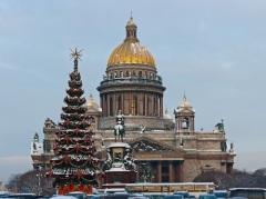 В Санкт-Петербурге впервые наряжена общественная рождественская елка
