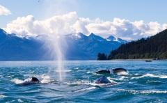 Аляска передана США