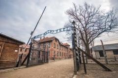 Советские войска освободили узников Освенцима