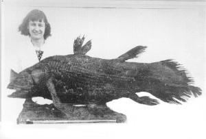 Близ южной части Африки была выловлена латимерия — самая древняя рыба на Земле