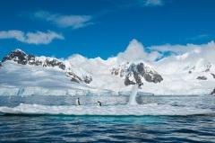 Амундсен известил мир об открытии им Южного полюса