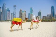 Образовано федеративное государство Объединенные Арабские Эмираты