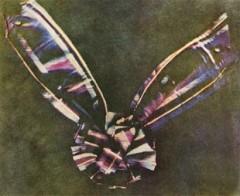 Впервые публично продемонстрирована цветная фотография, сделанная по методу физика Джеймса Максвелла