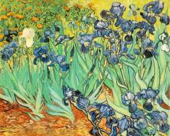 Картина Ван Гога «Ирисы» продана за рекордную сумму